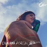 ceu_caravana